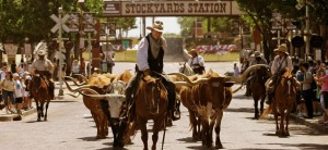 The cattle drive in the Stockyards is definitely worth checking out.